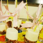Chocolate covered Marshmellow pops