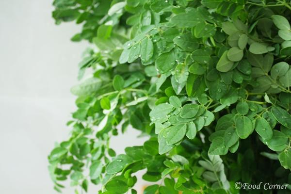Drumstick leaves (Murunga Kola)