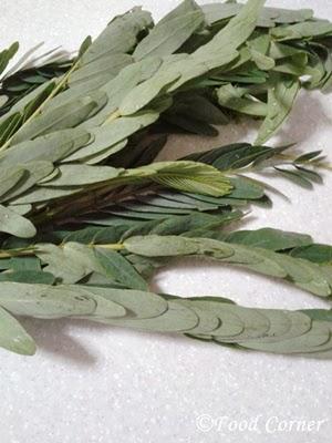 Kathurumurunga Leaves