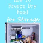 Prepper Tip: How to Freeze Dry Food for Storage