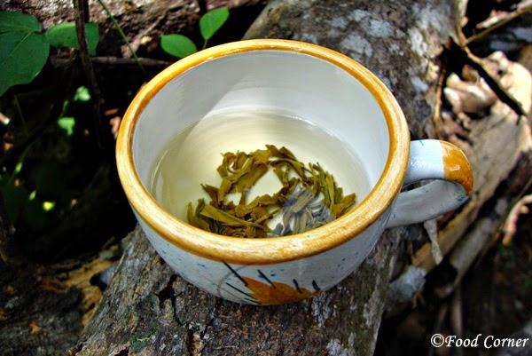 Teavivre Tea Review