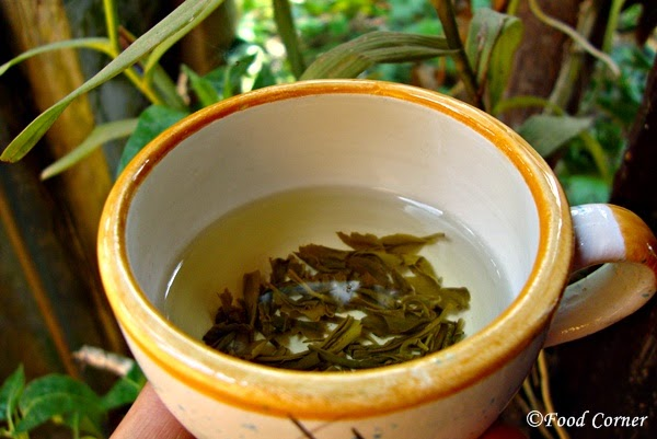 Green-Tea-Reviews