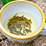 Organic Tian Mu Mao Feng Green Tea from Teavivre