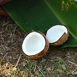 Can you Scrape Coconut for a Competition?