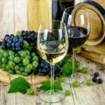 Vinstagram – Is Social Media Changing the Way We Enjoy Wine?