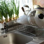 How to Save Water in Your Kitchen (the Best Tips Ever!)